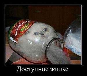 Доступное жилье в Москве